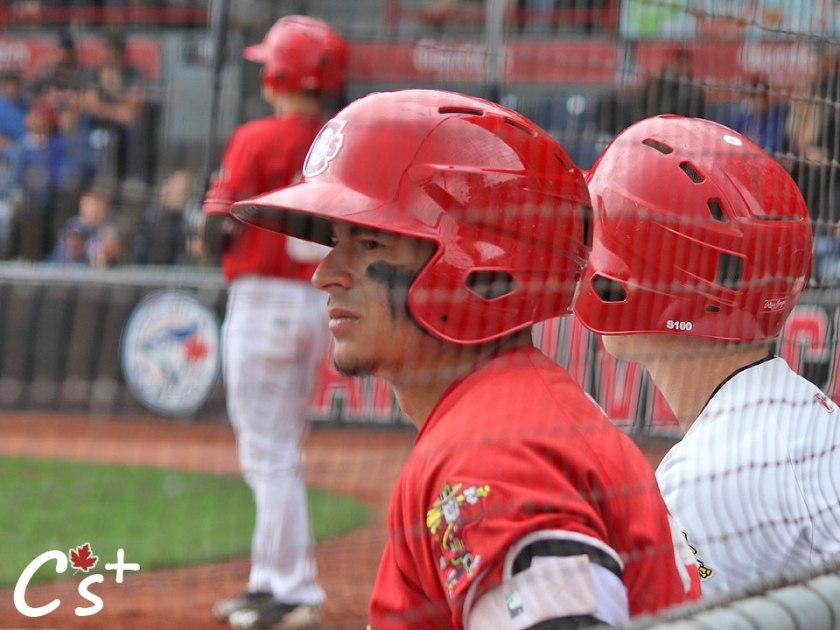 christopher_bec_batting_helmet_bench